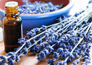Lavender-essential-oil-healing-for-children